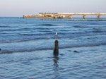 Zamierzasz wypoczywać nad polskim morzem? Już dziś pomyśl o dogodnych pokojach